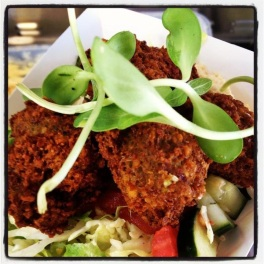 Foxy Falafel Platter with Sprouts